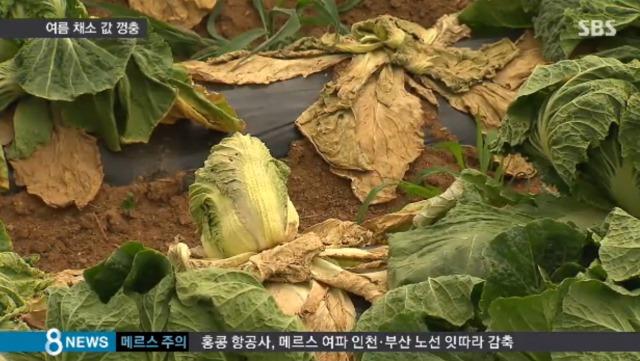 ⑦韓国干ばつ2